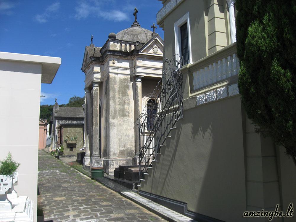 Curitiba miesto kapinės, Brazilija 004
