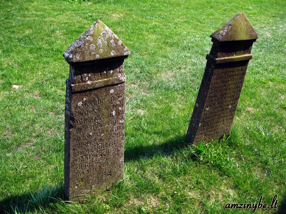 Riugeno salos kapinės