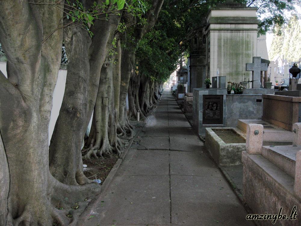 San Paulo, Brazilija kapinės - 014