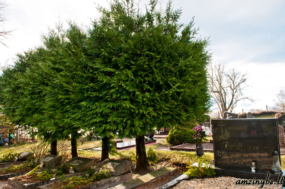 Karklės kapinės - 002