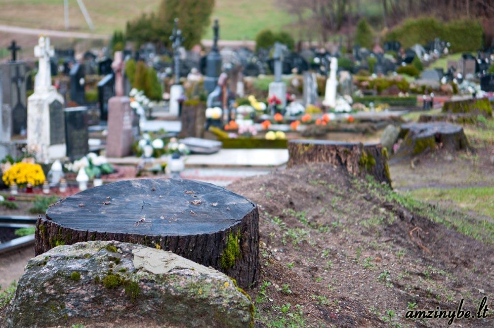 Kartenos kapinės - 010