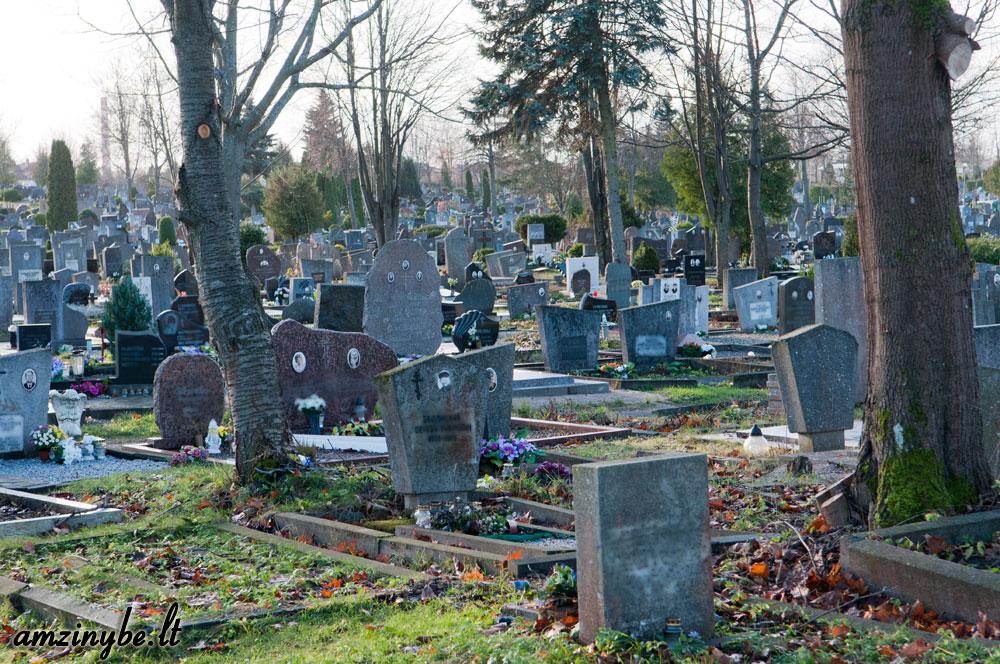 Klaipėdos miesto kapinės 004