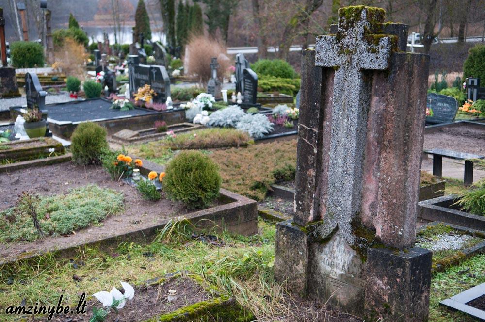 Plungės senosios kapinės - 006