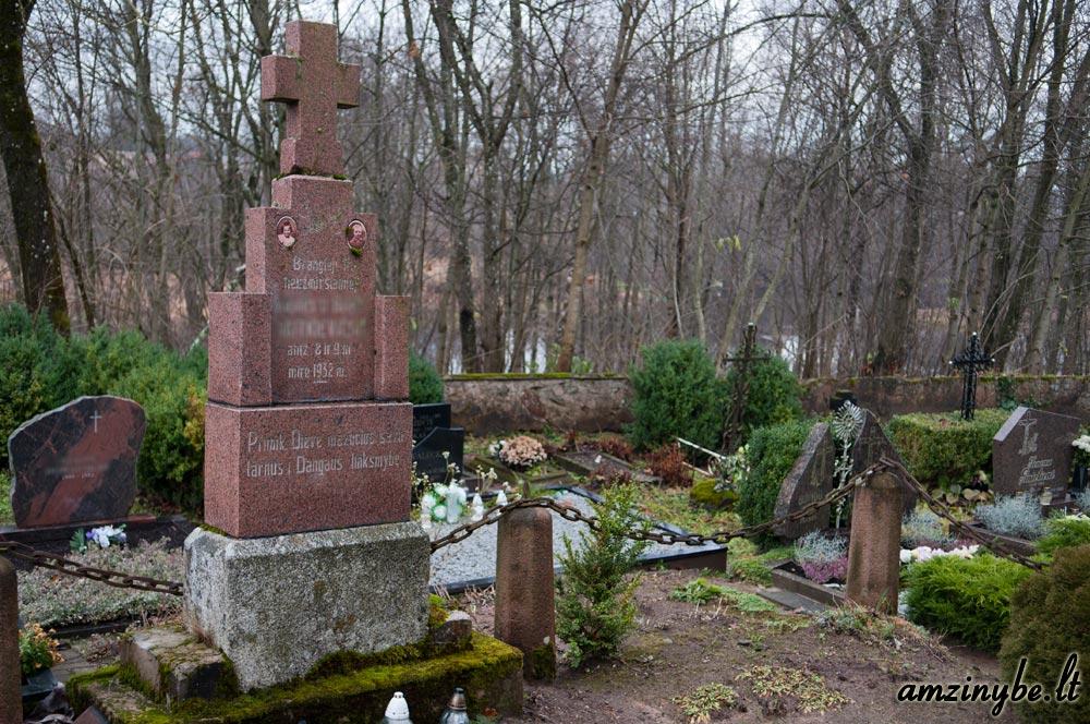 Plungės senosios kapinės - 011