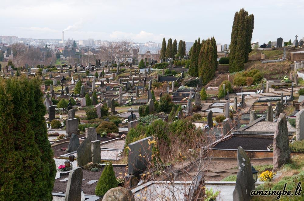 Plungės kapinės - 005