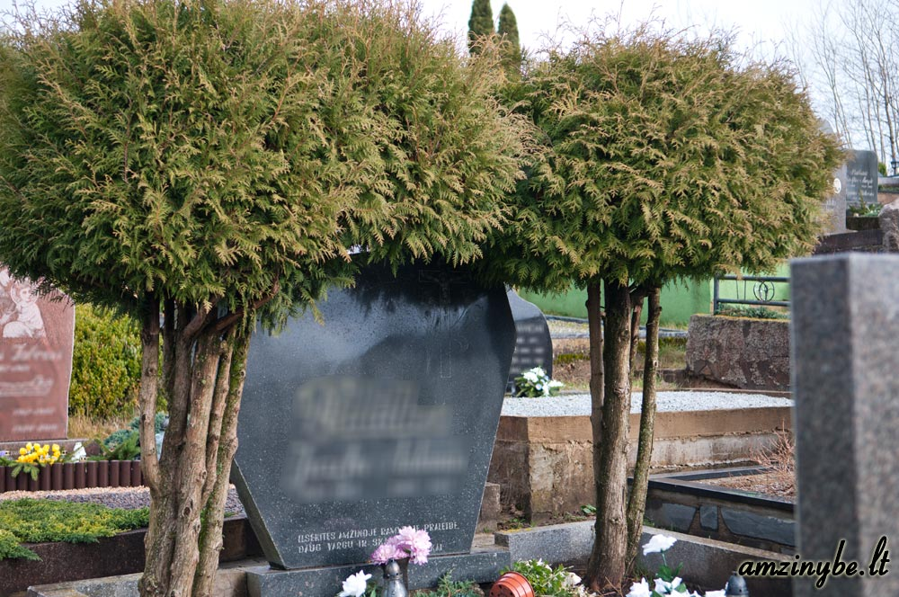 Plungės kapinės - 007
