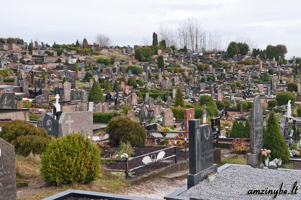 Plungės kapinės - 010