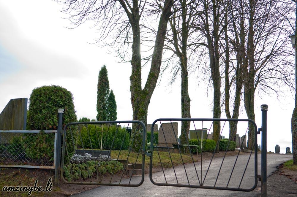 Plungės kapinės - 001