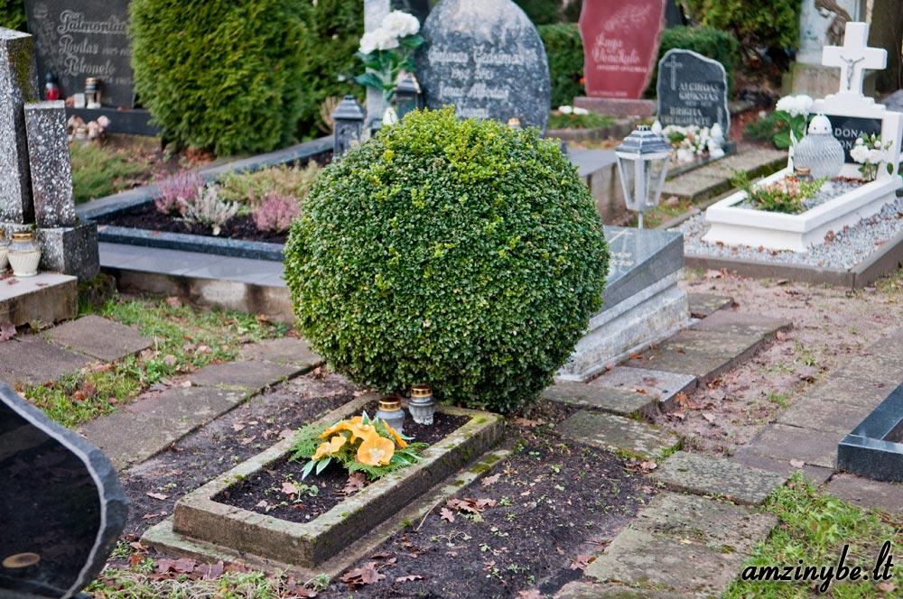 Priekulės kapinės, senoji dalis - 006