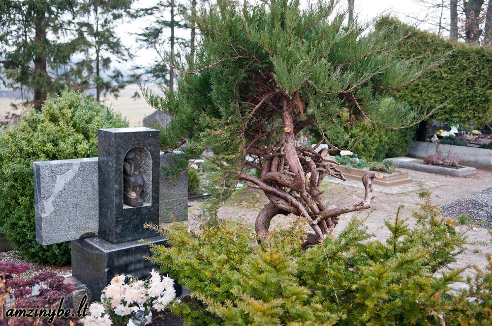 Priekulės kapinės, senoji dalis - 014